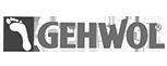 logo gewhol